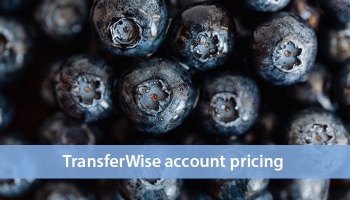 fees, rates and limits transferwise