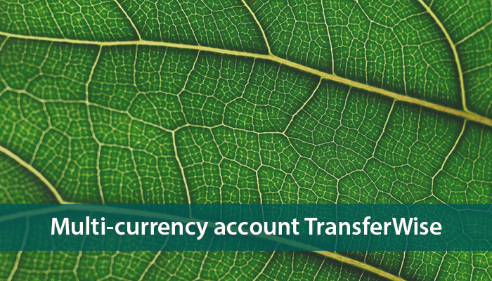 multi-currency account transferwise