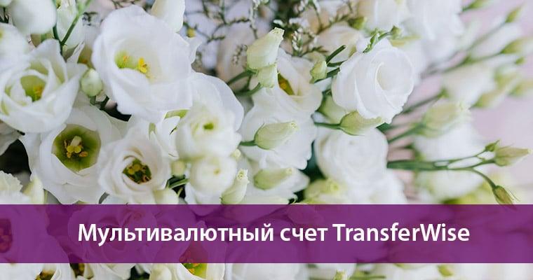 мультивалютный счет трансфервайс