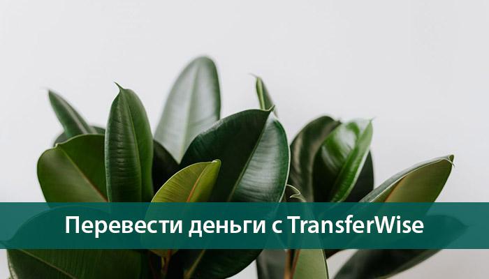 обзор денежных переводов TransferWise