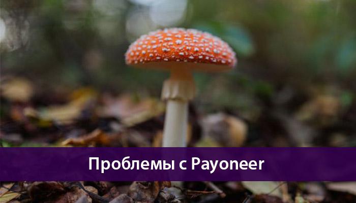 проблемы с payoneer
