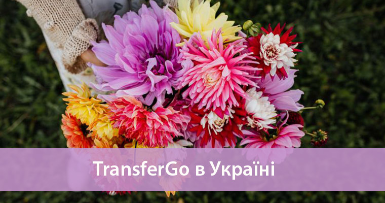 огляд transfergo в україні