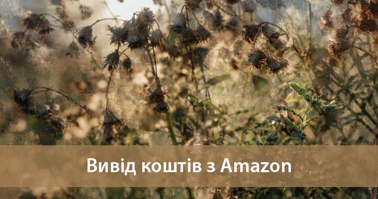 вивести гроші з Amazon